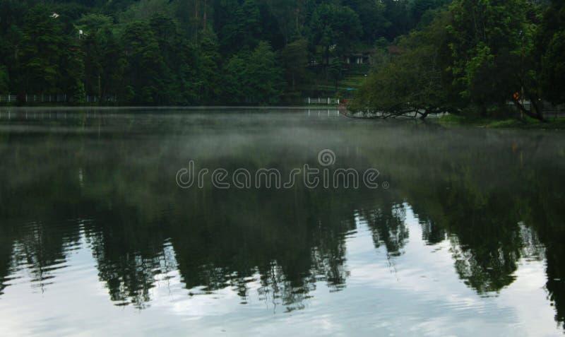 Wzgórze mgła na kodaikanal jeziorze przy wczesnym porankiem z odbiciami obrazy stock