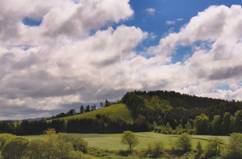 Wzgórzu