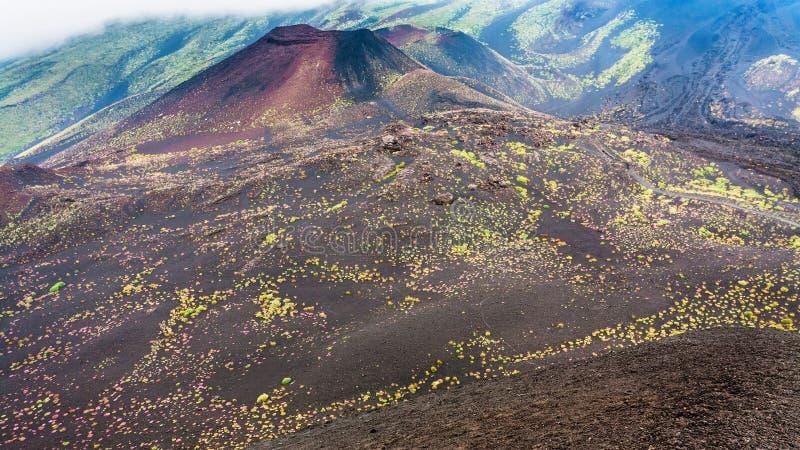Wzmacniający kratery na górze Etna i obraz royalty free