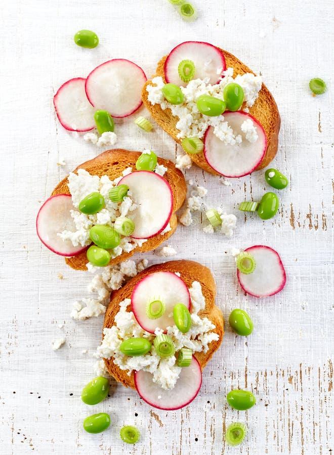 Wznoszący toast chleb z chałupy rzodkwią i serem obrazy stock