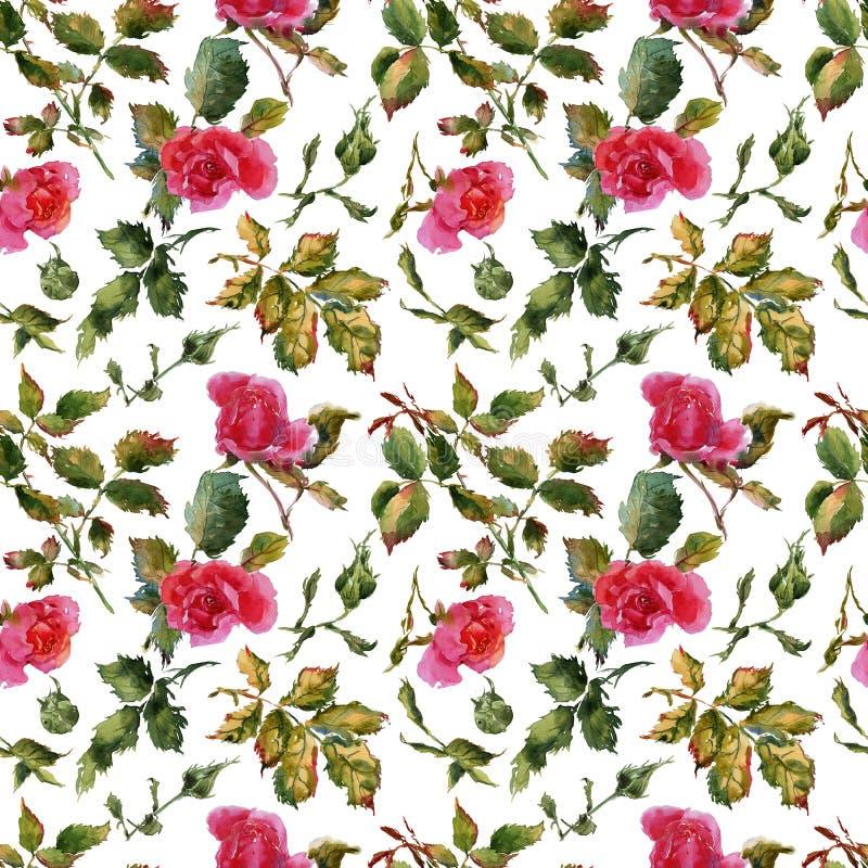 Wzrastał kwiat handmade akwareli bezszwowy deseniowy delikatnego obrazy royalty free