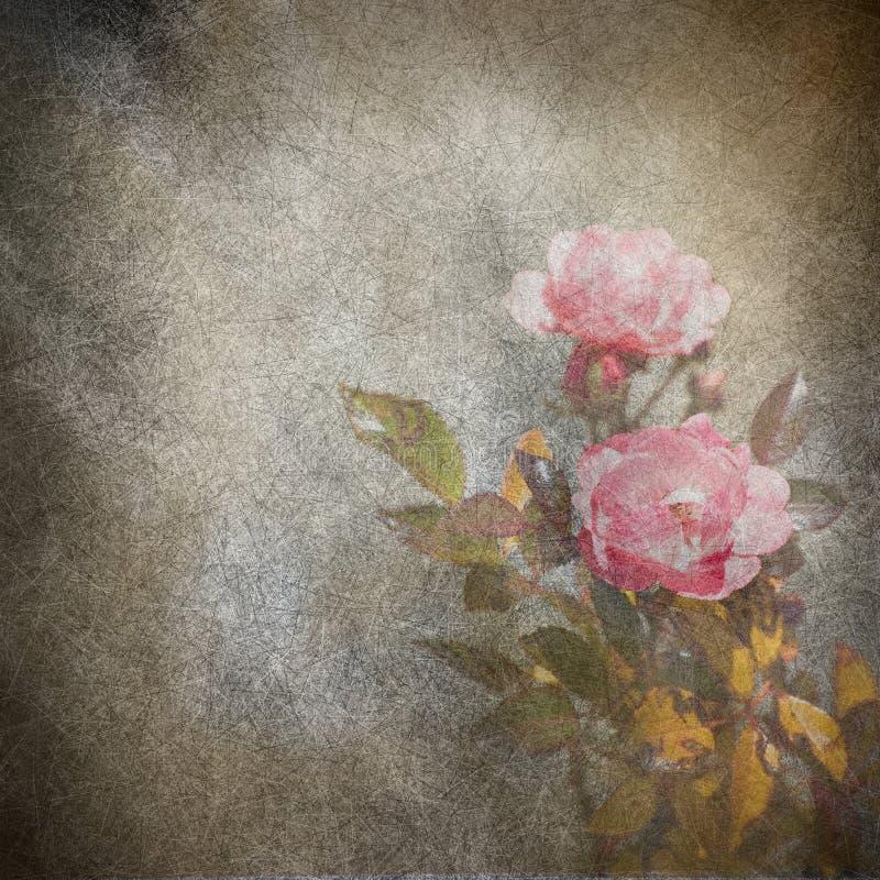 Wzrastał kwiatu grunge ilustrację ilustracja wektor