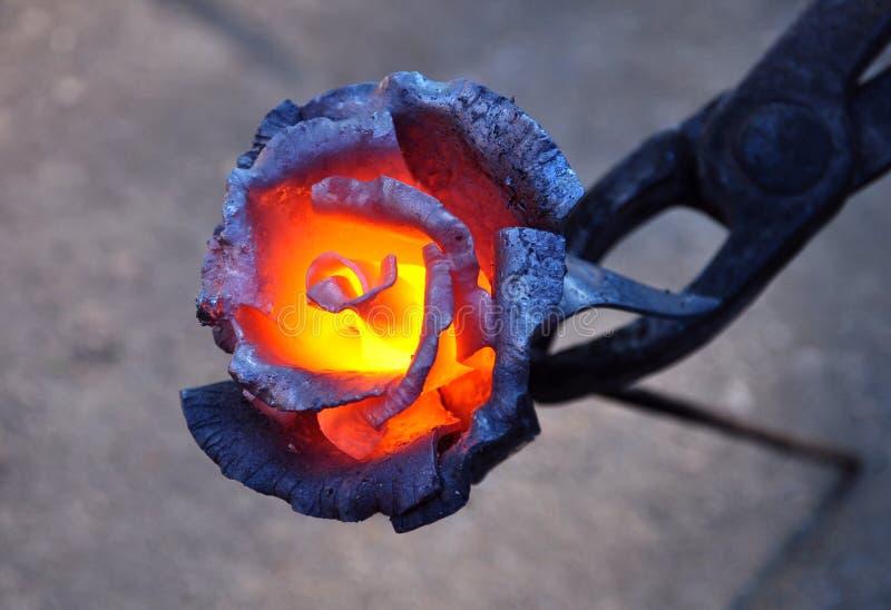 Wzrastał kwiatu robić metal obraz stock