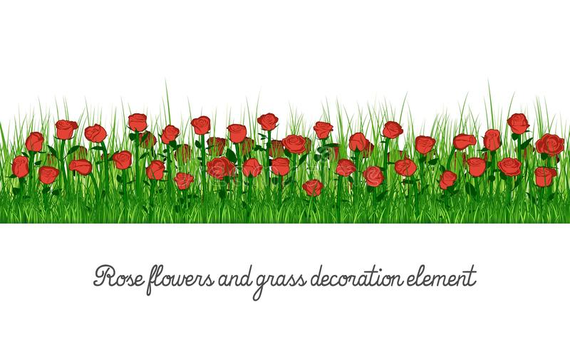 Wzrastał kwiaty i trawy dekoraci element ilustracja wektor