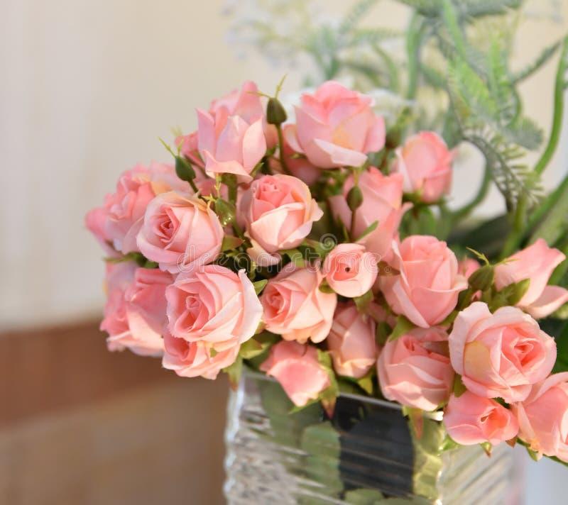 Wzrastał menchia kwiatu fotografia stock
