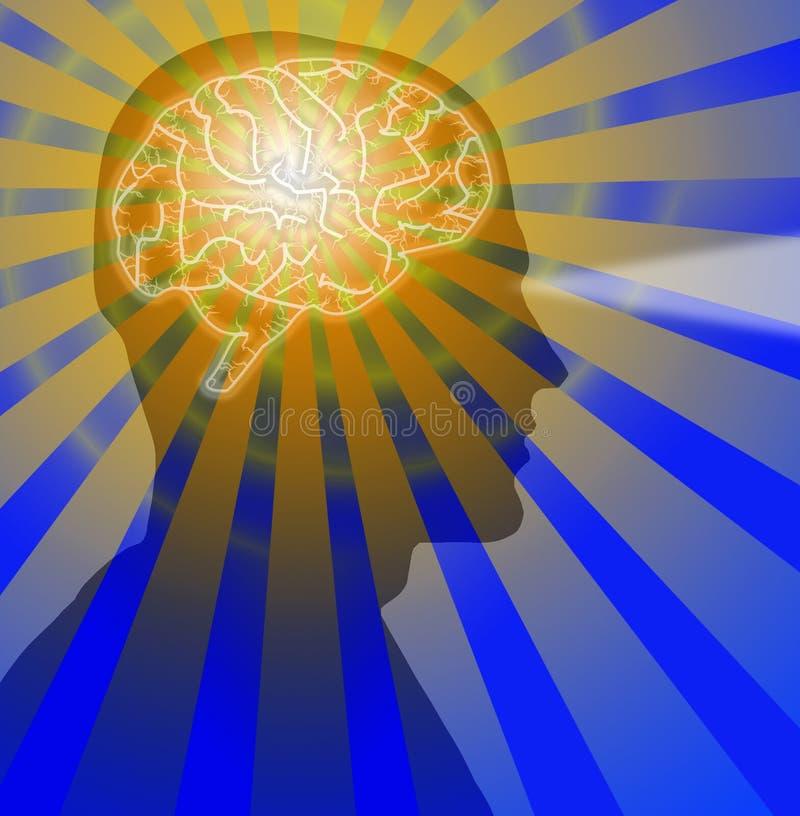 Wzrok móżdżkowa Samiec royalty ilustracja