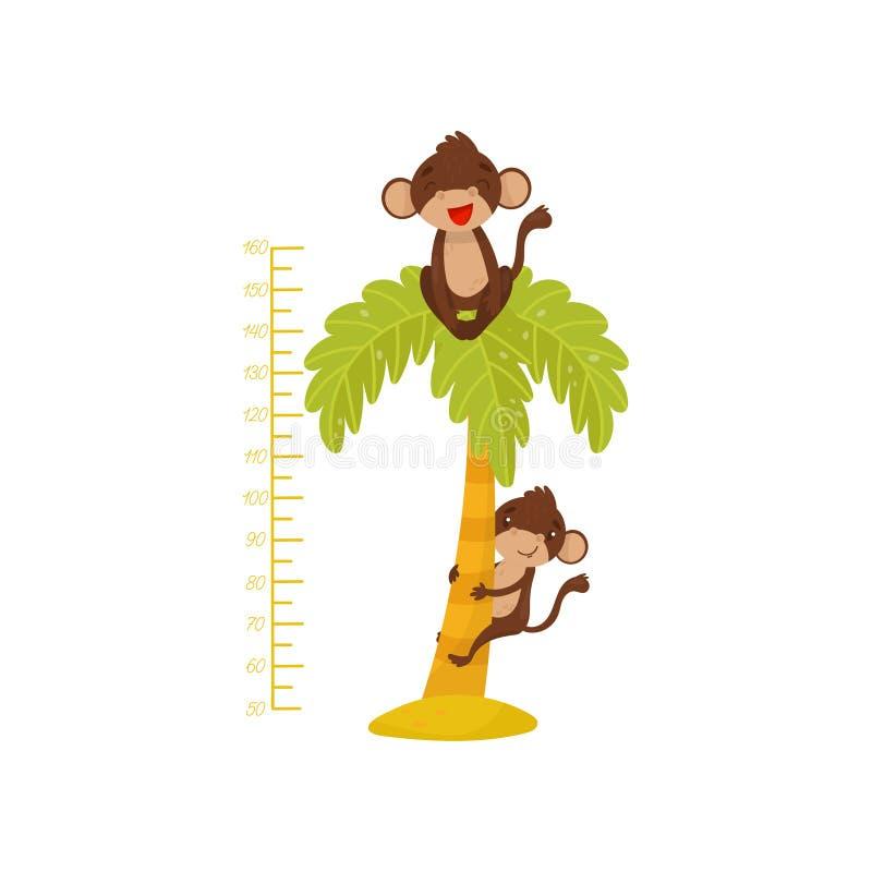 Wzrost mapa dla dzieci i śmiesznych małp na drzewku palmowym Tropikalni zwierzęta Pomiarowy ścienny majcher dla dzieciaków izbowy ilustracja wektor