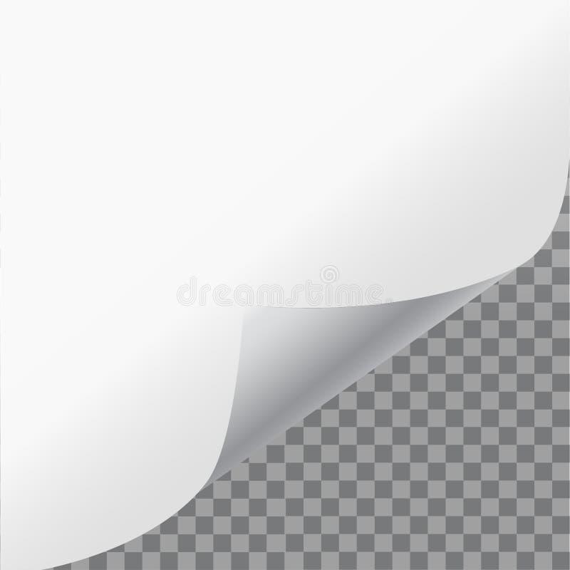 Wzywa kędzior z cieniem na pustym prześcieradle papier Białego papieru majcher Wektorowa ilustracja dla twój biznesu i projekta ilustracja wektor