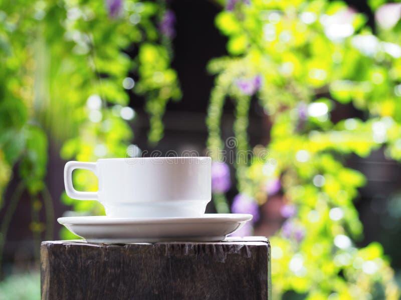 Xícara de café branca sobre o fundo abstrato floral verde do borrão imagem de stock royalty free