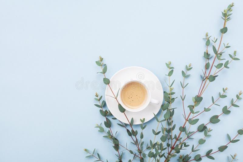 A xícara de café e o eucalipto verde folheiam na opinião de tampo da mesa azul Café da manhã de Minimalistic no estilo da configu fotografia de stock royalty free