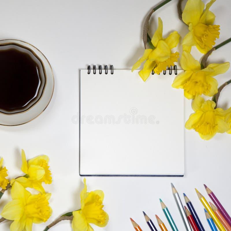 Xícara de café e uns pires, narcisos amarelos e lápis em um fundo branco imagem de stock royalty free