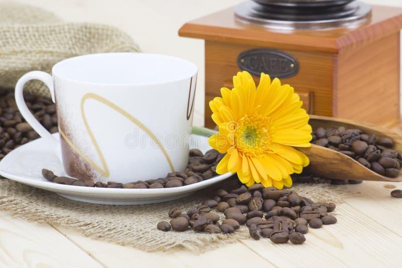Xícara de café, gerbera amarelo e feijões de café fotos de stock