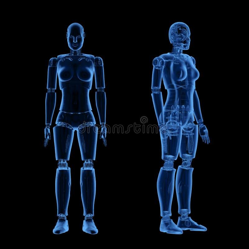 X光女性半机械人或机器人 库存例证