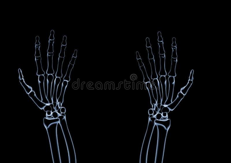 X射线辐射与被回报的拷贝空间的最基本的3d例证 皇族释放例证