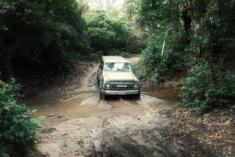 4x4 όχημα αυτοκινήτων που διασχίζει ένα μικρό ρεύμα του ποταμού στο τροπικό δάσος ζουγκλών στοκ εικόνες