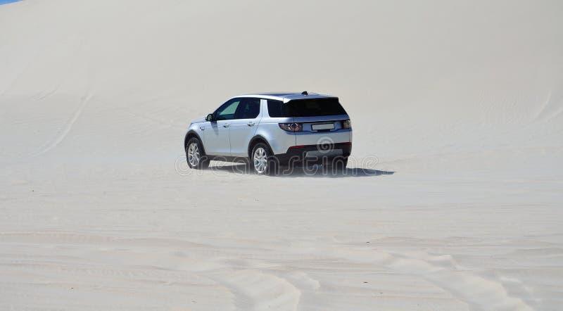 4x4 управляя в песчанных дюнах стоковые изображения rf