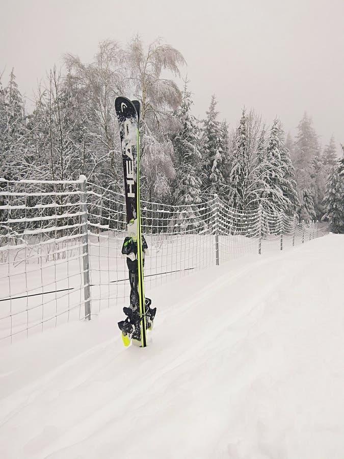 & x22;有所有snow& x22;哈哈 免版税库存照片