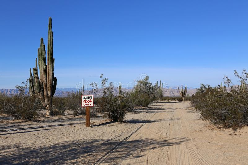 Only 4x4 in the Baja California Desert. Only 4 by 4 sign ind the Baja California Desert, between Cactus royalty free stock photography