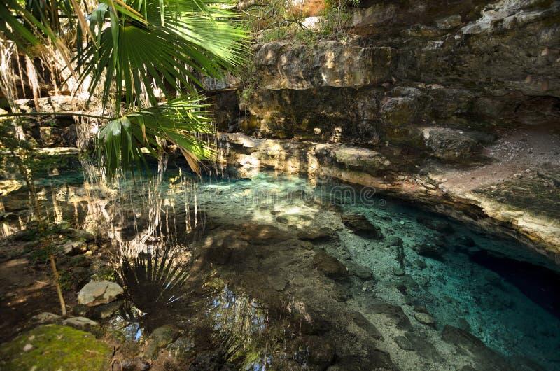 X-Batun Cenote - natuurlijke lagune met transparant turkoois water royalty-vrije stock afbeelding