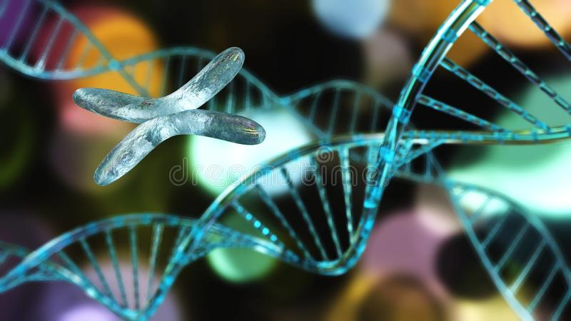 X chromosome and DNA. Gene and RNA, medetine abstract background, 3d rendering stock illustration