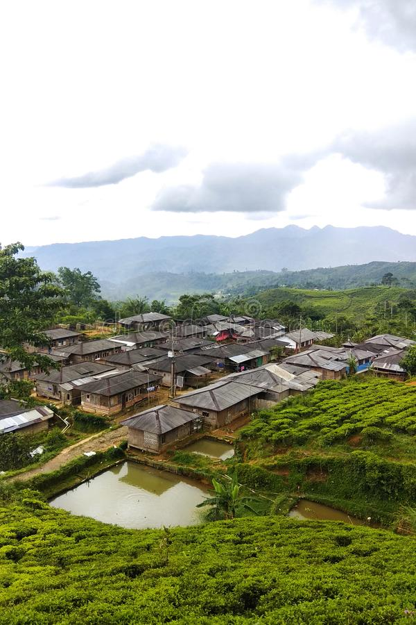 & x28 Dusun Tokyo& x29  Κρυμμένο ορεινό χωριό που απομονώνεται σε Malasari, Bogor Ινδονησία Μεταξύ του δάσους και της φυτείας τσα στοκ φωτογραφία με δικαίωμα ελεύθερης χρήσης