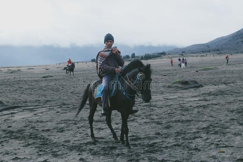 & x22; Horseman& x22; royaltyfria foton