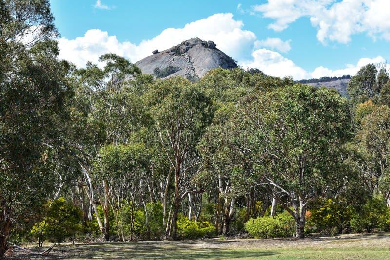 & x22; Il Pyramid& x22; nel parco nazionale di Giraween immagini stock libere da diritti