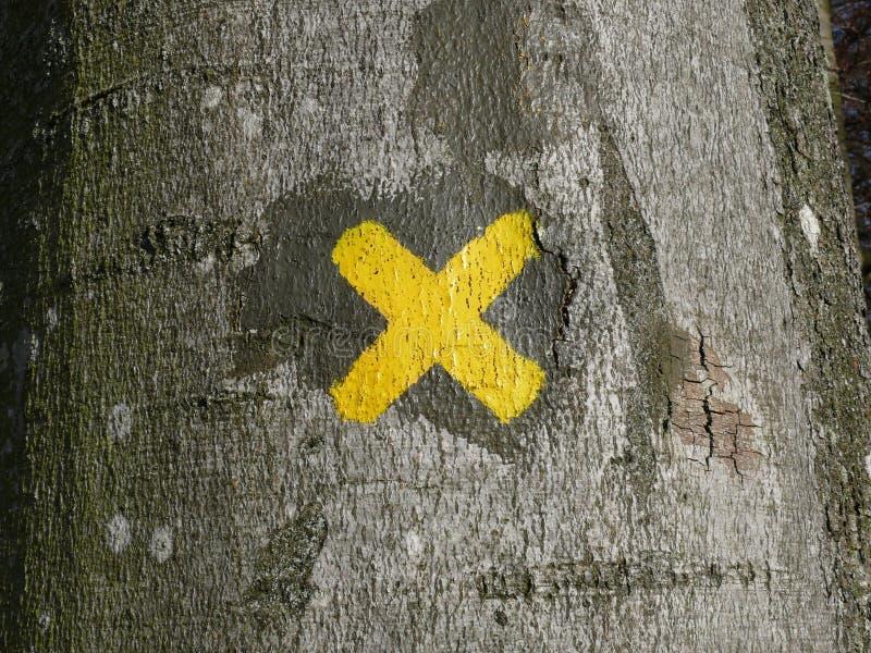 X mark sur un arbre photos libres de droits
