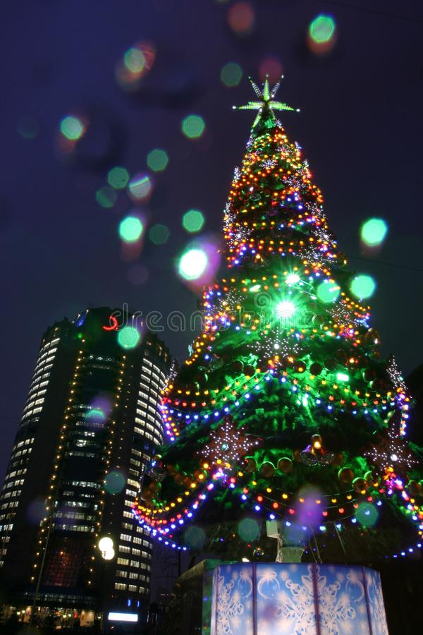X-mas tree or Christmas tree with a holiday illumination at night in the city royalty free stock images