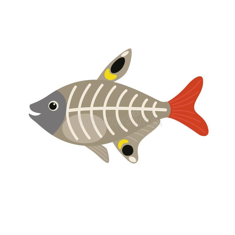 X-ray Fish animal cartoon character royalty free illustration