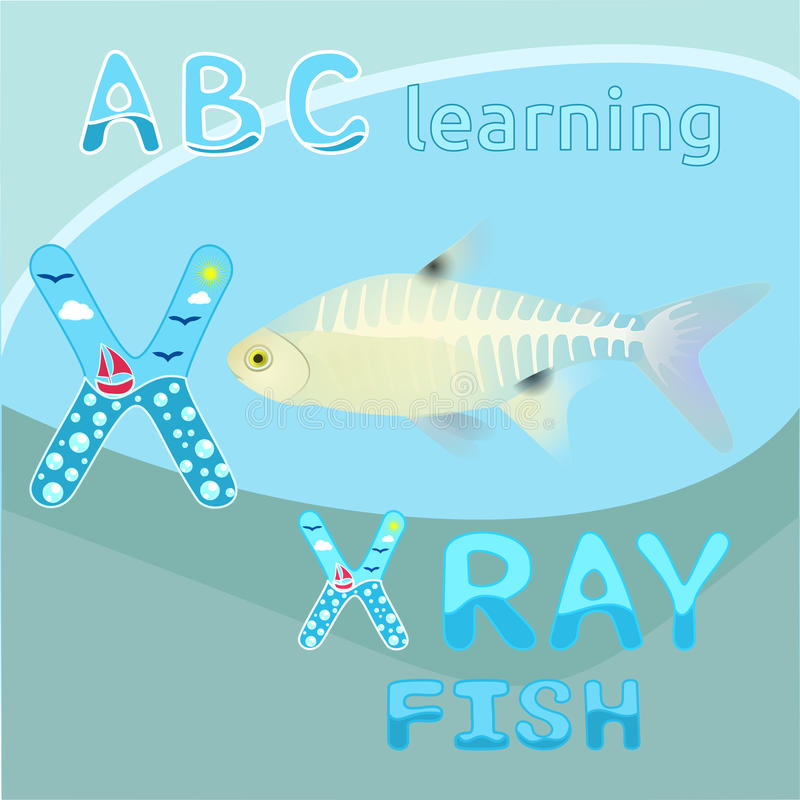 X is for X ray fish vector Letter X font Antarctic animal X-ray fish Transparent body & visible skeleton realistic character North vector illustration