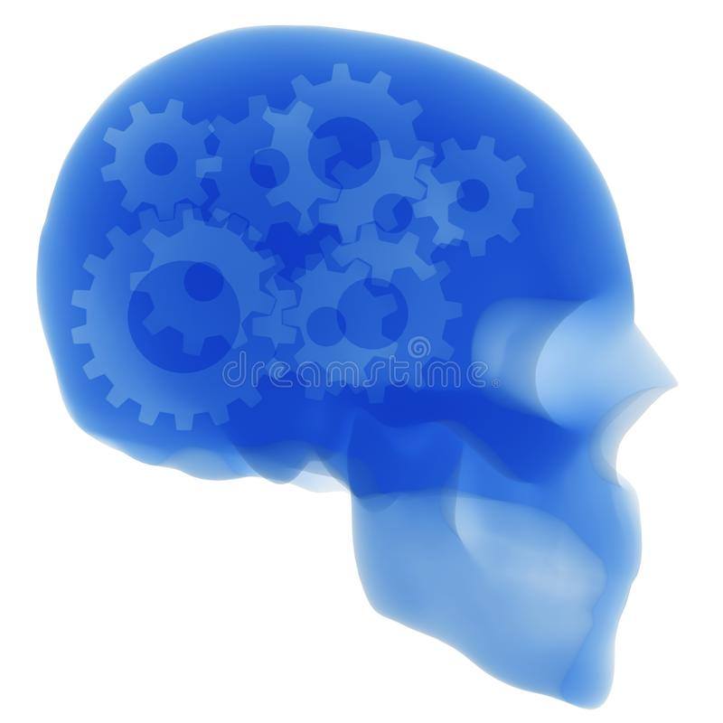 X ray of the gears in human head