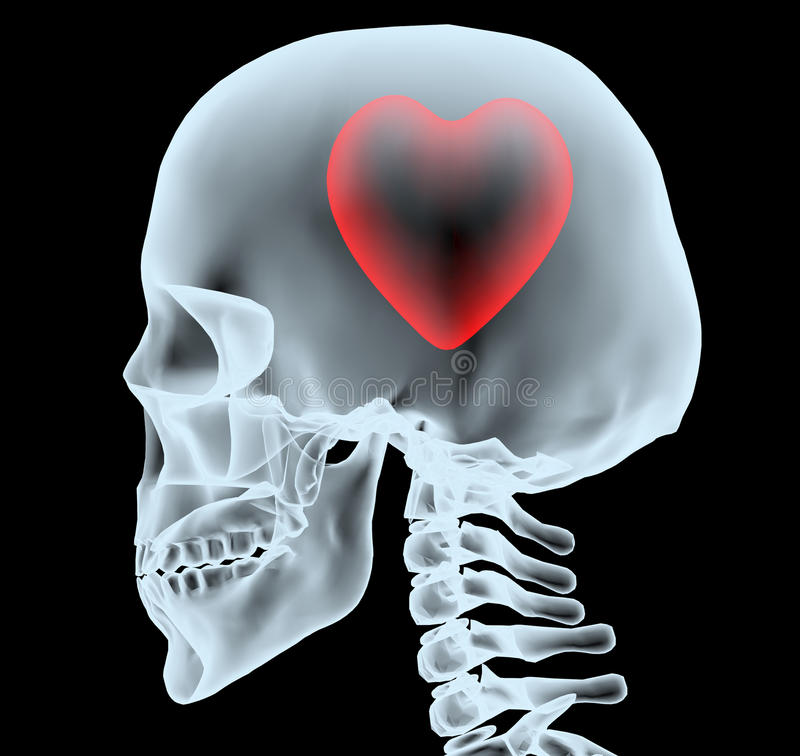 X-ray of a head with the heart instead of the brain. 3d illustration