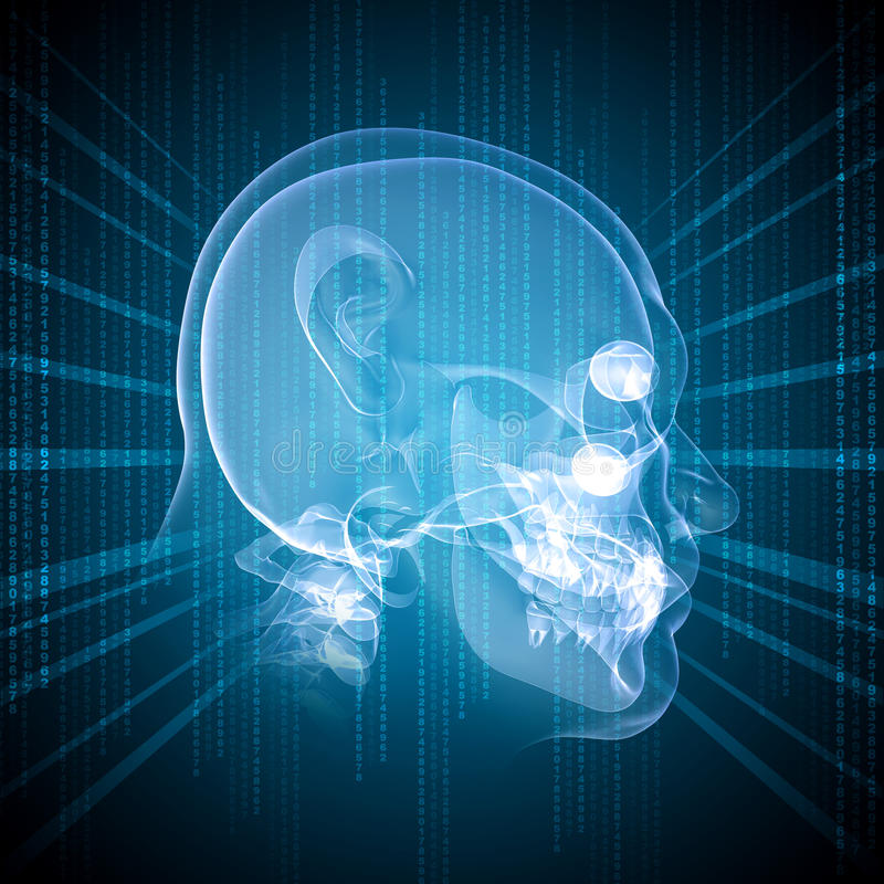 X-ray image of a man's head royalty free illustration