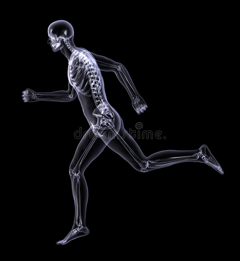 X-Ray Man Running - side view - with clipping path royalty free illustration