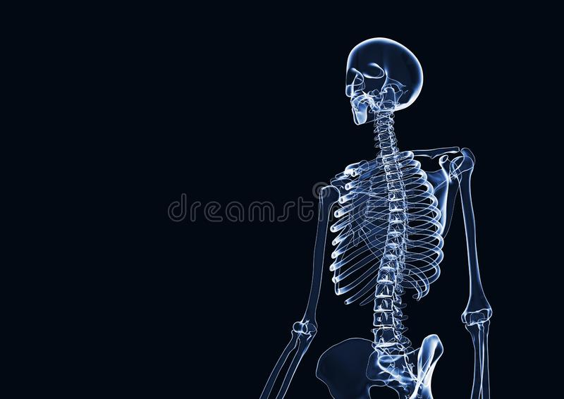 X-RAY skeleton 3d rendered with copy space stock illustration