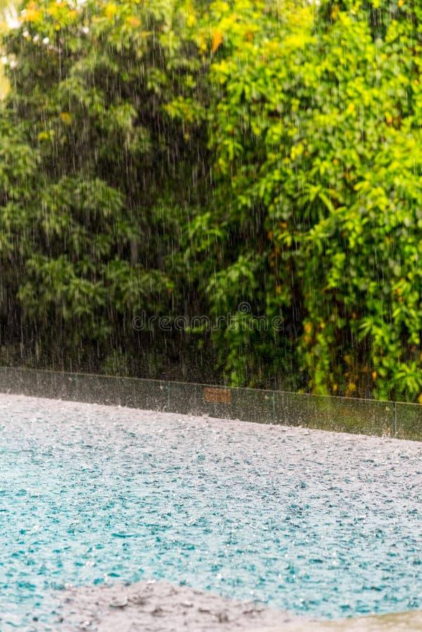 & x28; torrent& x29;下雨落在smilling的水池a的表面大海 库存照片