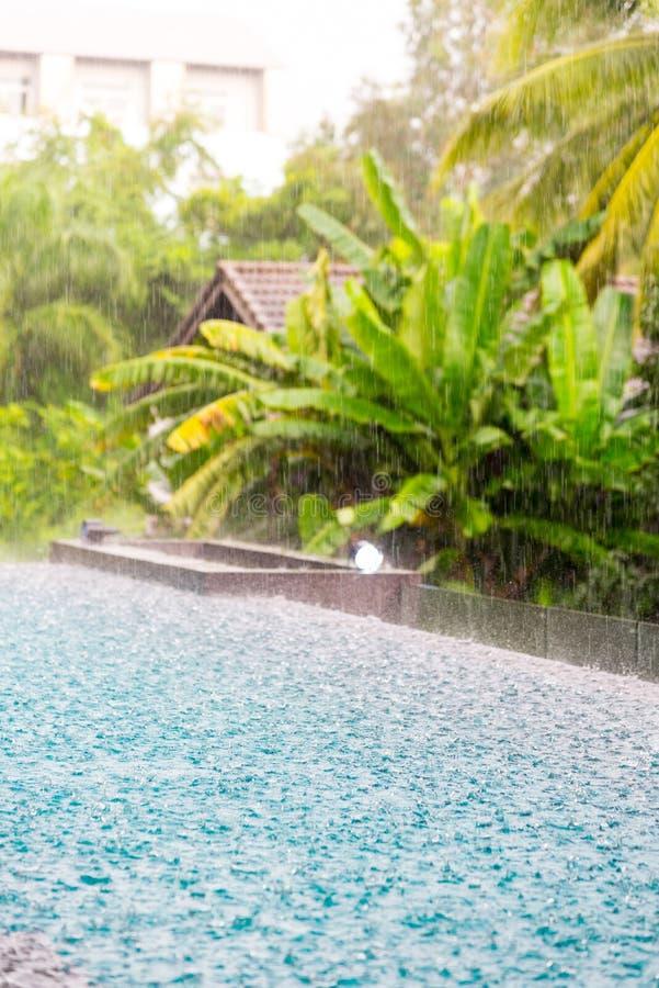 & x28; torrent& x29;下雨落在smilling的水池a的表面大海 图库摄影