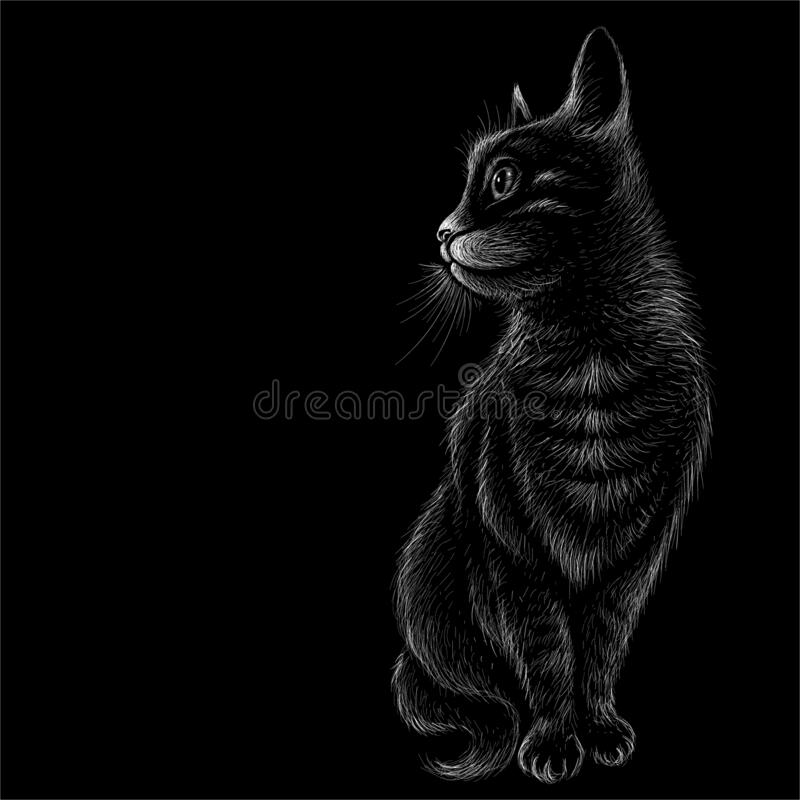 The Vector logo cat for tattoo or T-shirt design or outwear. Cute print style cat background. The Vector logo cat for tattoo or T-shirt design or outwear.  Cute royalty free illustration