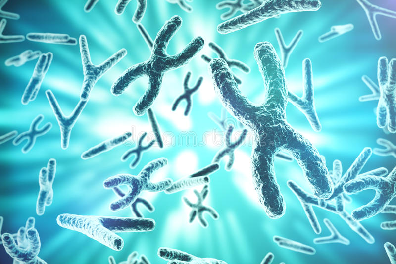 X-y-Chromosomen als Konzept für Symbol-Gentherapie der Humanbiologie medizinische oder Mikrobiologiegenetikforschung 3d stock abbildung