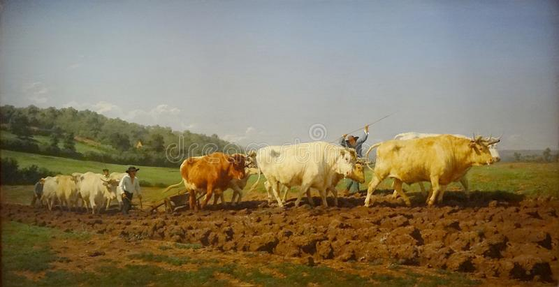 &-x22; Labourage nivernais&-x22; , siedzi aussi &-x22; Le Sombrage&-x22; , Rosa Bonheur, 1849 obrazy stock