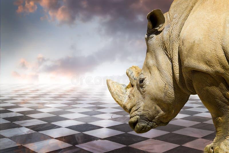 Xadrez poderosa de rhino.gamero, assoalho de mármore das partes imagem de stock royalty free