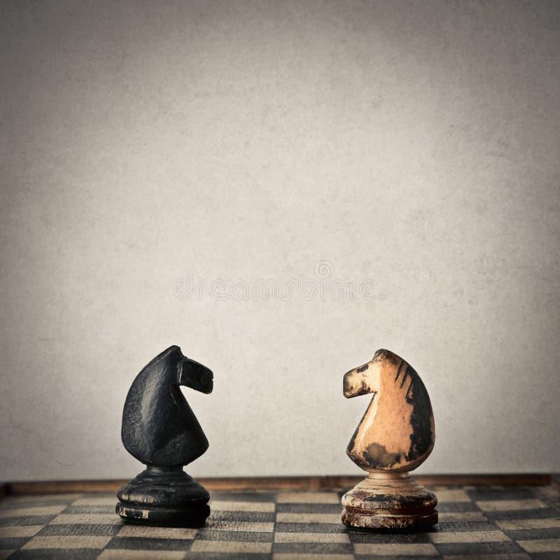 Xadrez preto e branco do cavalo ilustração royalty free