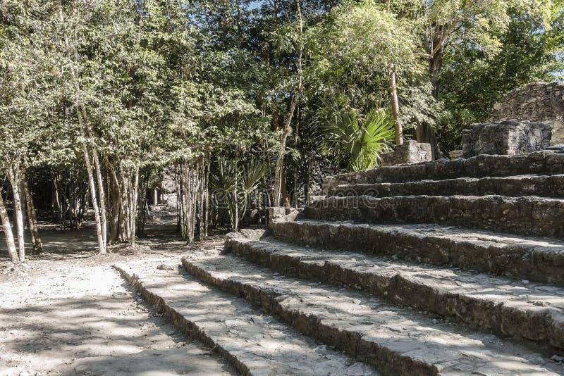Xaibe pyramid in Coba, Mexico royalty free stock images