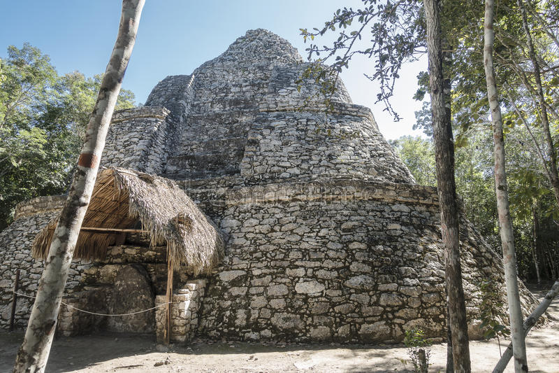 Xaibe pyramid in Coba, Mexico royalty free stock photography