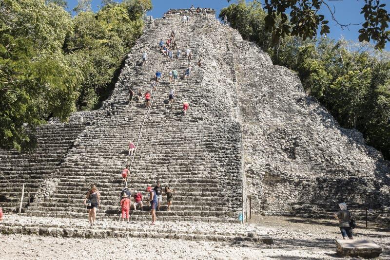 Xaibe pyramid in Coba, Mexico royalty free stock image