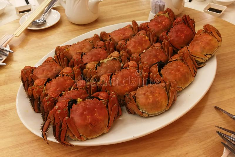 Xangai Xangai Hairy Crabs chineses mitten crabs cuisine imagem de stock