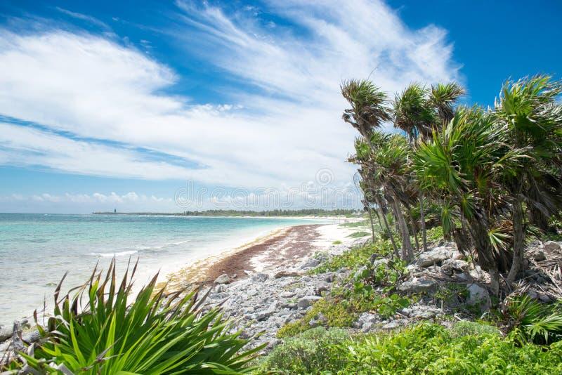 Xcacel strand i Riviera Maya, Mexico fotografering för bildbyråer