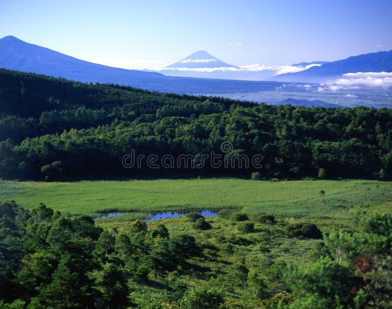 XCI de Fuji de support images stock