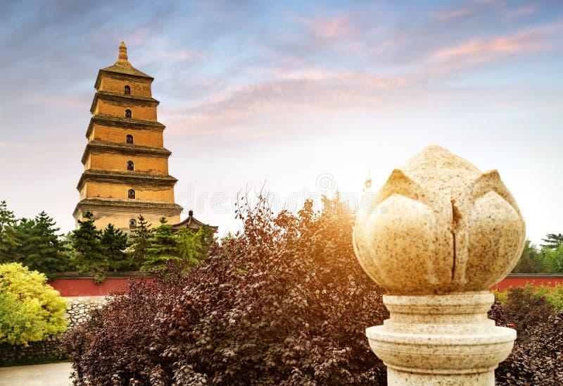 ` XI одичалая пагода гусыни стоковое изображение